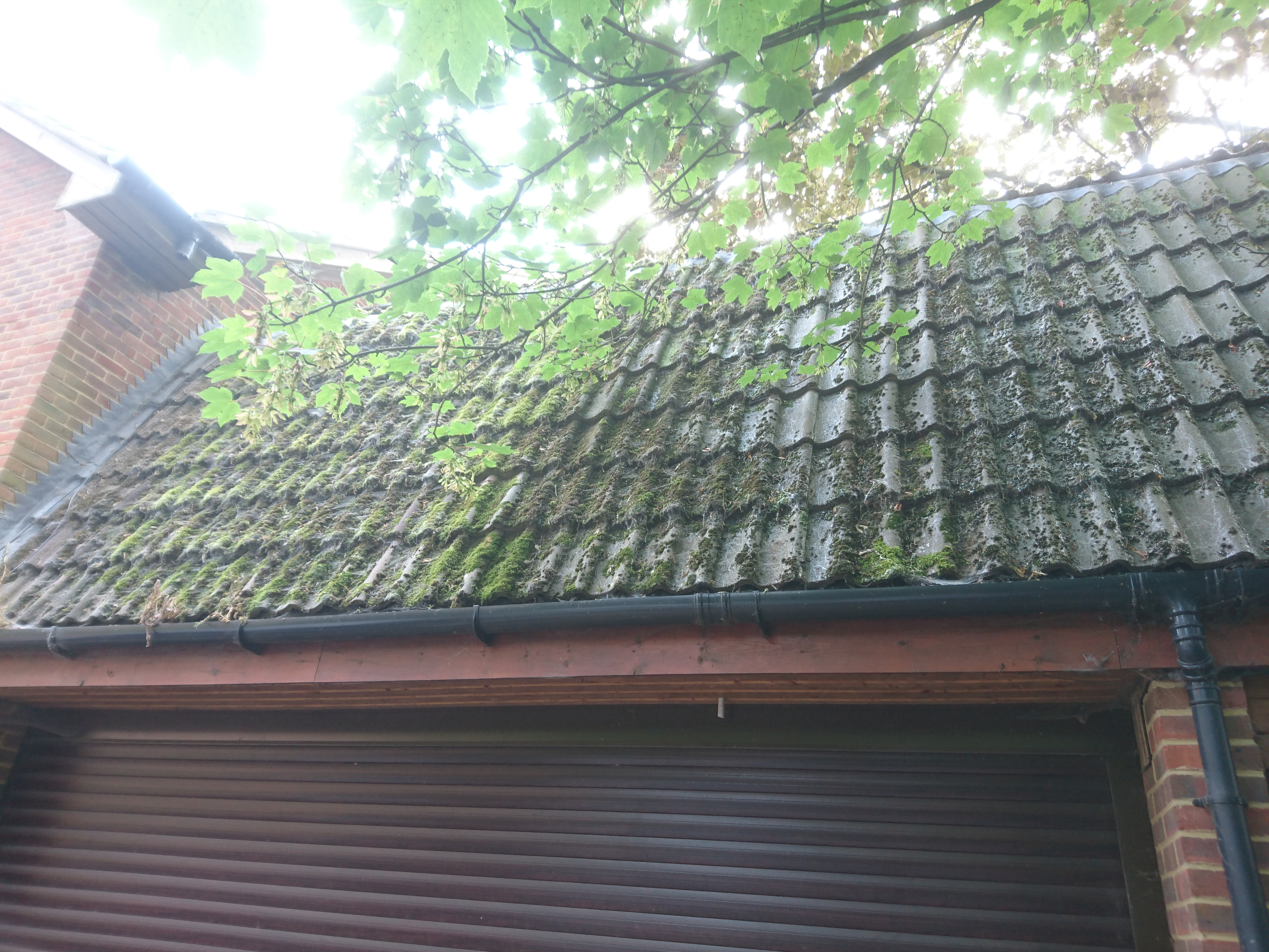 clean my roof